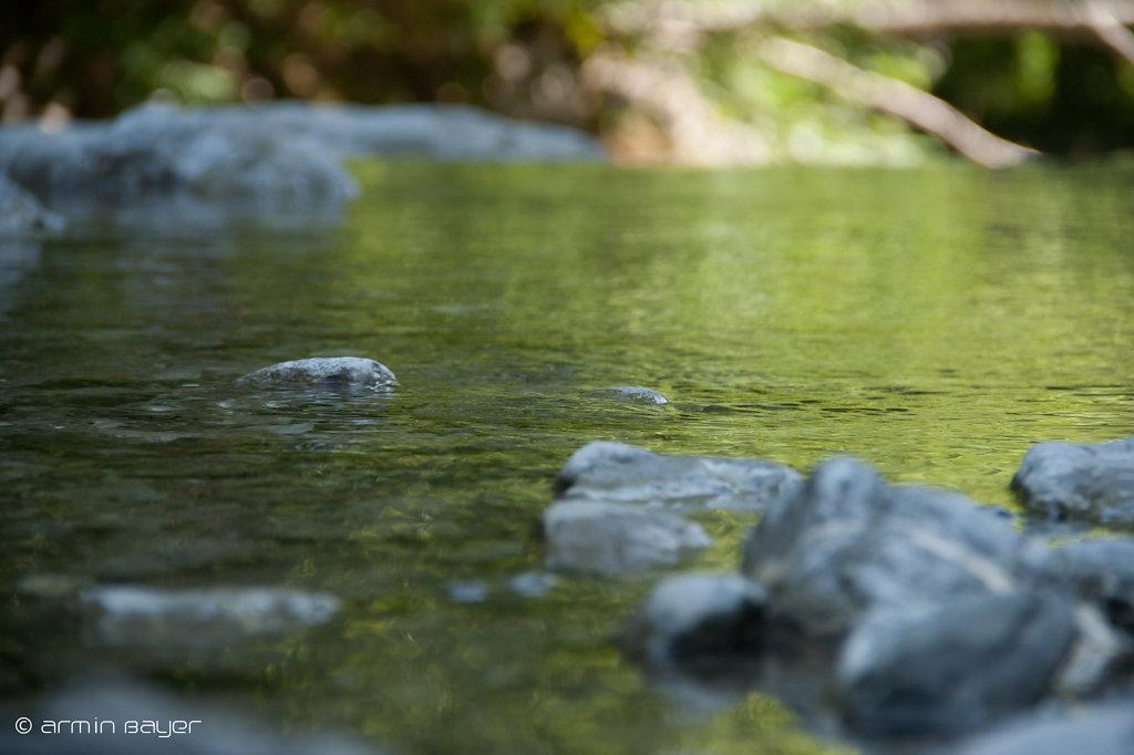 Wasser-13.jpg